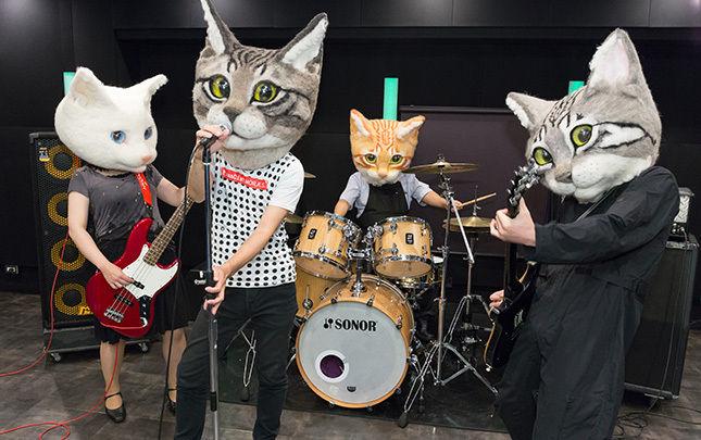 早く猫になりたい! そんなあなたに超リアルな被り物「リアル猫ヘッド」登場 気になるお値段は?