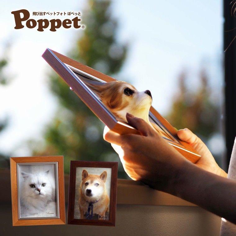 Poppet(ぽぺっと)で愛犬・愛猫がいつも身近に! 飛び出すペットフォト