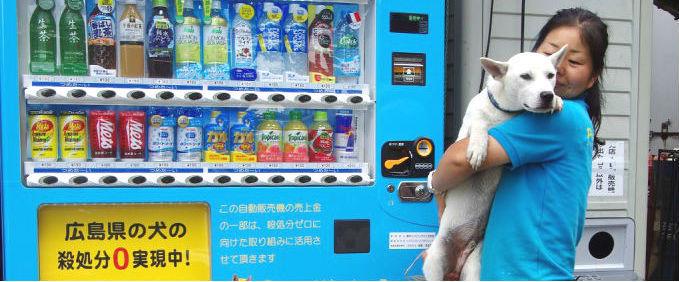 ドリンク購入でピースワンコ・ジャパンに寄付できる自販機が登場 災害救助犬の育成や保護犬の譲渡に活用