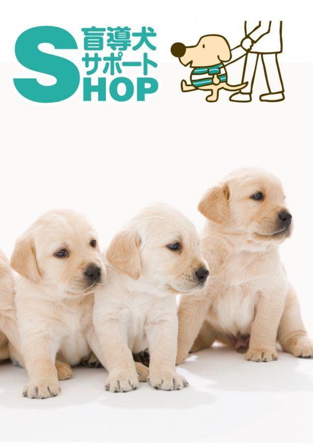 中野マルイに「盲導犬サポートSHOP」オープン 犬グッズを買って補助犬の育成を応援