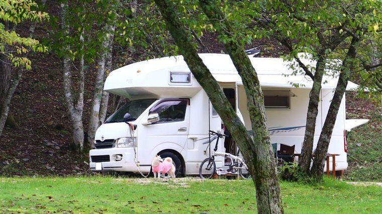 家庭円満の秘訣は「ペットとの旅行」 キャンピングカー所有者の半数がペットの飼い主