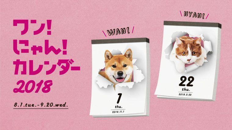 かわいいうちの子がカレンダーに!? 犬&猫の写真投稿キャンペーン開催中