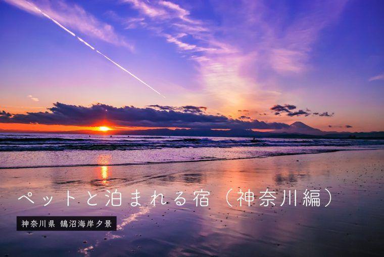 神奈川のペットと泊まれる宿10選 三浦半島・鎌倉・箱根などエリア別、温泉や人気高級宿など特徴別に紹介