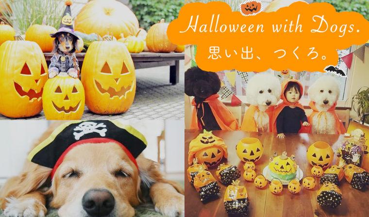 【2018年】愛犬とハロウィン! オススメのイベントや仮装グッズ、撮影スポットを紹介