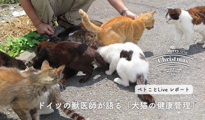 ドイツの獣医師が語る「犬猫の健康管理」 ペトことLiveセミナーレポート