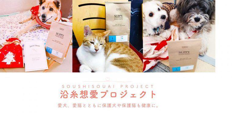 犬猫の保護団体に寄付金とSUPPYをお届け! 「沿糸想愛プロジェクト」結果報告