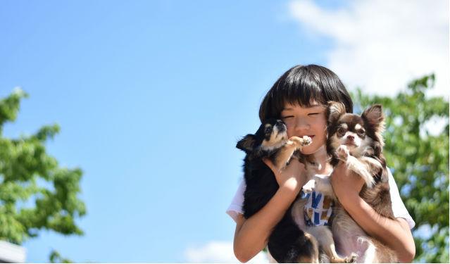 犬や猫と暮らす子どもは喘息や湿疹のリスクが減少する? 海外のアレルギー研究を紹介