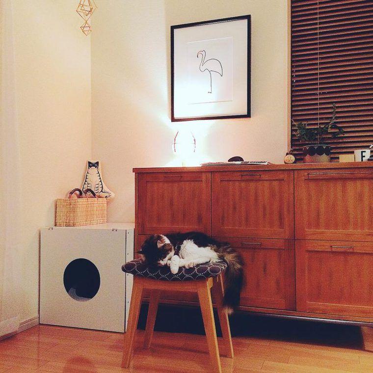 【猫との暮らし】椅子の上は特等席? 猫と椅子の生活風景