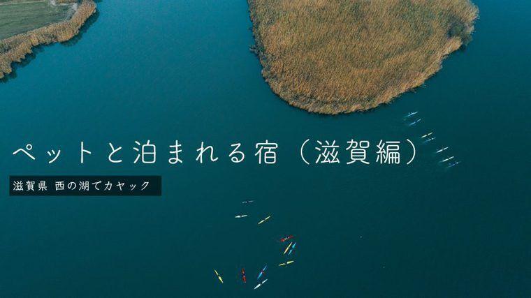 滋賀のペットと泊まれる宿おすすめ15選 コテージやリゾートなど特徴別に紹介