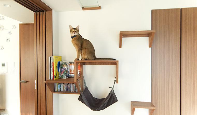 こだわりのデザインで。肉球も見えるキャットウォークがあるお家【愛猫ライフ取材 Vol.1】