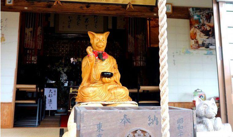 猫寺&猫神社に行こう♪ 東京エリアから福井の御誕生寺など全国エリアまで