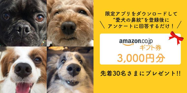 迷子の犬をゼロにするために。「鼻紋プロジェクト」第2弾サポーター募集中【6/15まで】
