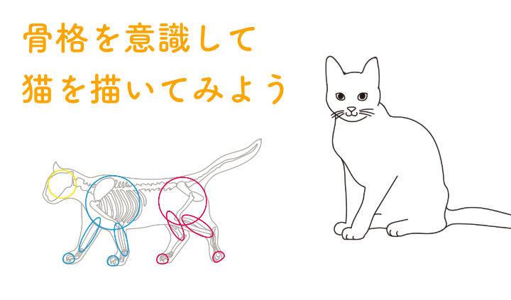 猫の描き方をプロが解説|骨格を意識したデッサン手法から、顔の特徴を出すコツまで