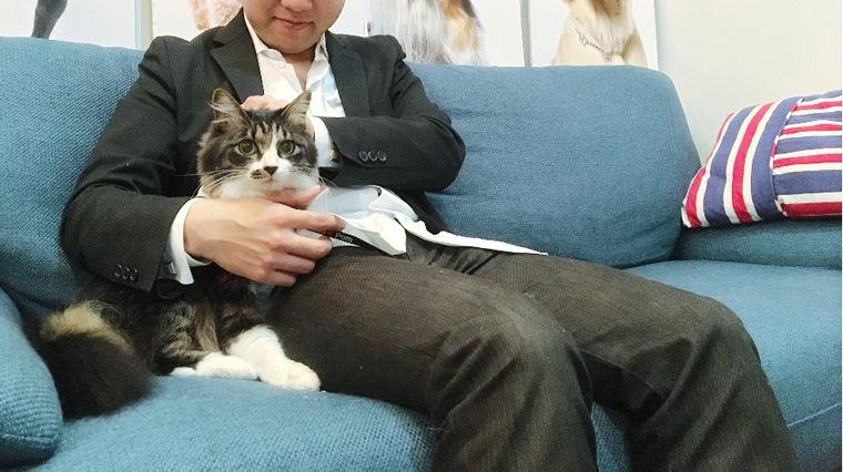 保護猫を卒業して社員猫に♪ 愛猫「リズモ」の成長記録【今日のシロップ】