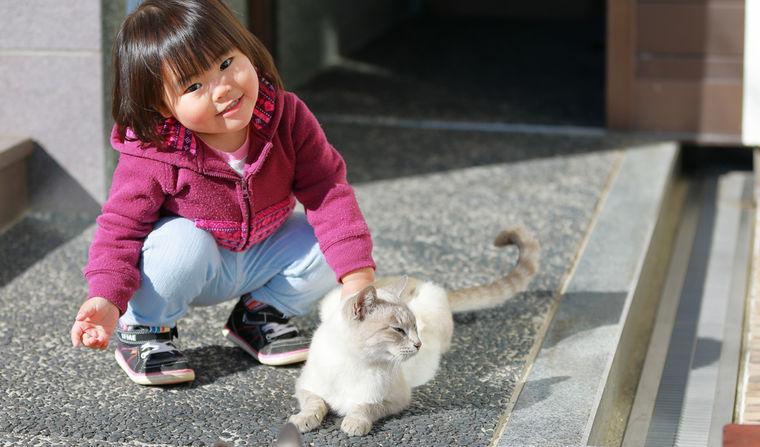 猫が子どものアレルギーに悪影響って本当なの? 科学的な答えを海外研究から紹介