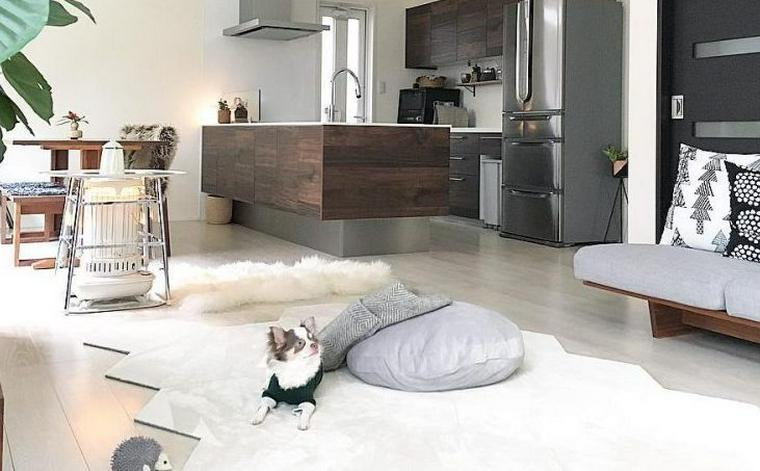 【犬との暮らし】 ラグが大好きな犬たちのいる生活風景