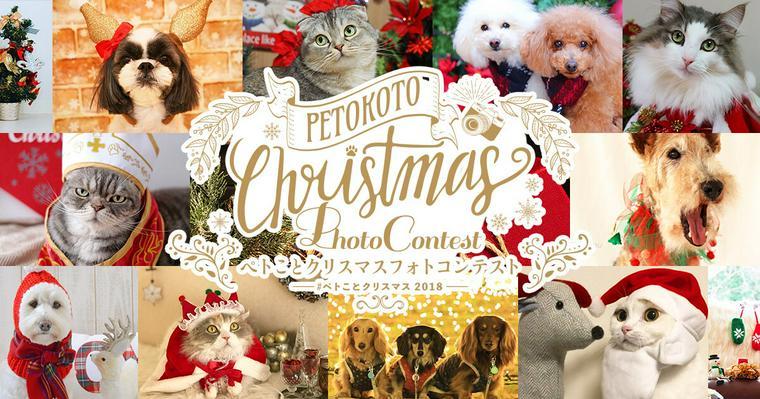 愛犬・愛猫とのクリスマスをシェアしてプレゼントGET♪ フォトコンテスト2018開催
