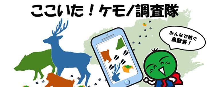 君も「ケモノ調査隊」に入らないか? 徳島県がシカ、イノシシ、サルの目撃情報をスマホで募集