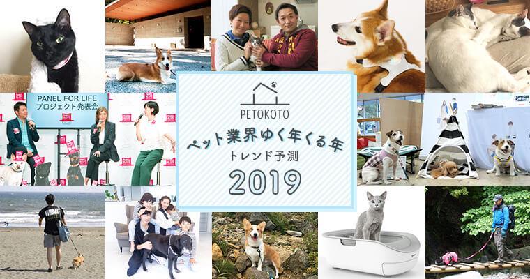 「ペット業界ゆく年くる年」業界キーパーソンたちのトレンド予測2019