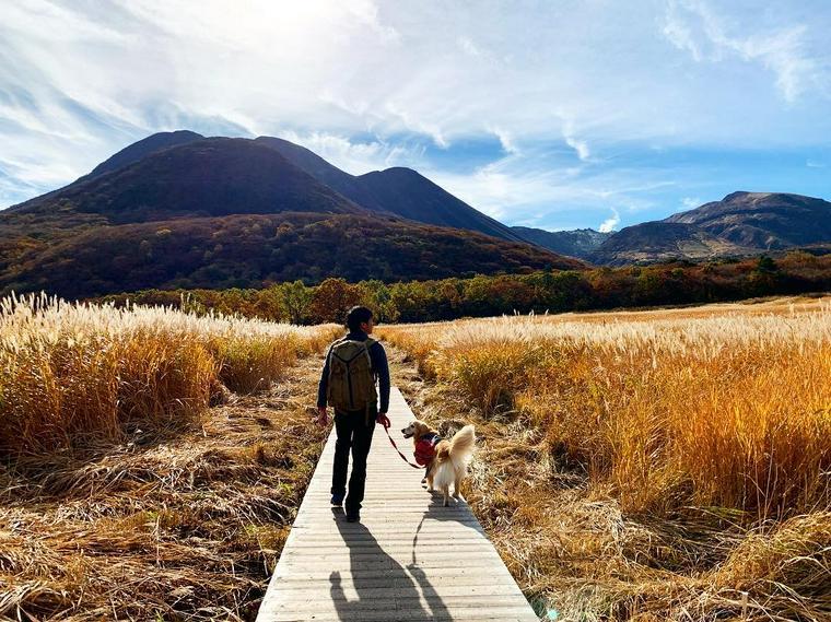 犬と登山を楽しもう! 楽しみ方や法律など注意点や便利グッズ、おすすめの山を紹介