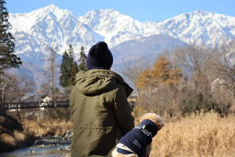 犬との冬の過ごし方 冬毛になっても室温や散歩の対策は必要