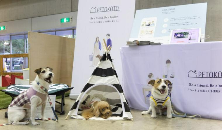 「カートラジャパン2018」開催中 愛犬たちも楽しむ会場の様子をレポート♪