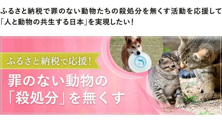 犬猫たちの幸せが一番の返礼品♪ ふるさと納税で動物支援プロジェクトスタート