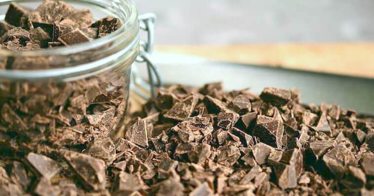 猫がチョコレートを食べると死に至る場合も。理由や応急処置を解説
