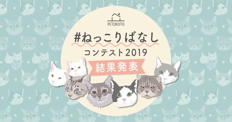 猫を愛するみんなの「#ねっこりばなし」 コンテスト結果発表