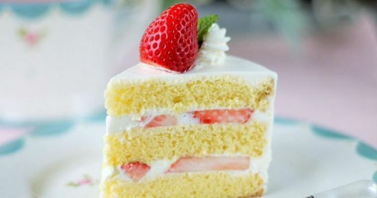 猫はケーキを食べても大丈夫? 砂糖や脂質に要注意。あげるなら猫用を
