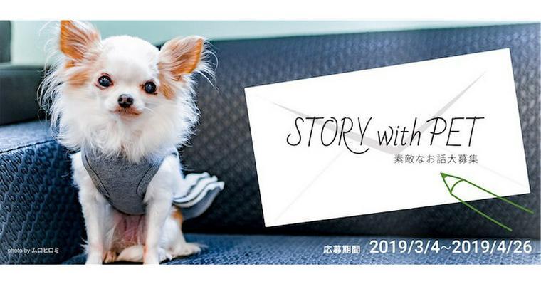 あなたの1投稿が1000円の寄付に 「STORY with PET」キャンペーン開催中