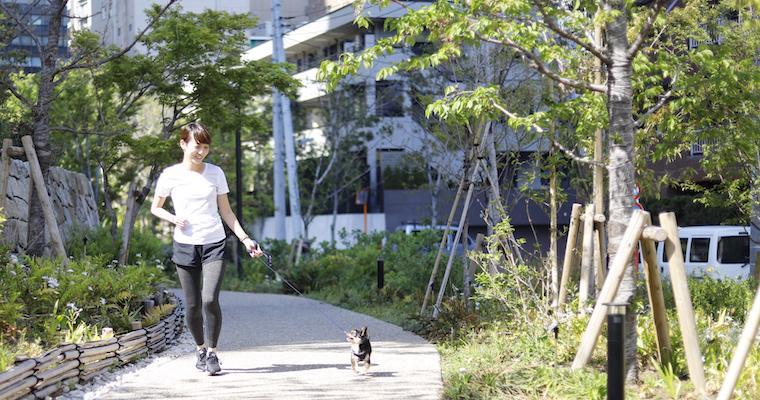 【特集:新しい「私」】愛犬も一緒に楽しめるスロージョギングのすすめ