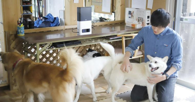 【FUN LETTER】保護犬猫をみんなで見守る。「Petcube」が保護団体の支援活動をスタートしました。