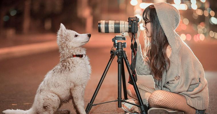 【2019年版】犬の撮影におすすめのカメラ6選|おしゃれなものやペットに特化したものまで