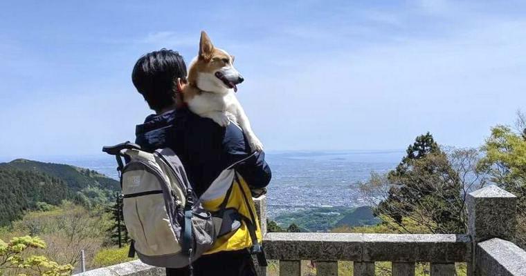 神奈川にコルクとお出かけ! 登山をしたり、海で遊んだりしました【今日のシロップ】
