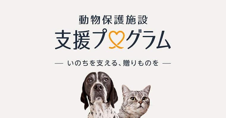 Amazonが保護犬猫支援をスタート! ほしい物リストが紡ぐ「支援の輪」