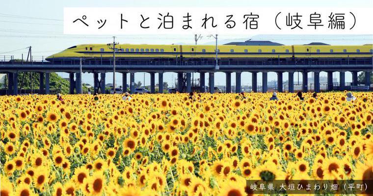 岐阜県のペットと泊まれる宿15選 温泉やコテージ、猫と泊まれる宿など特徴別に紹介
