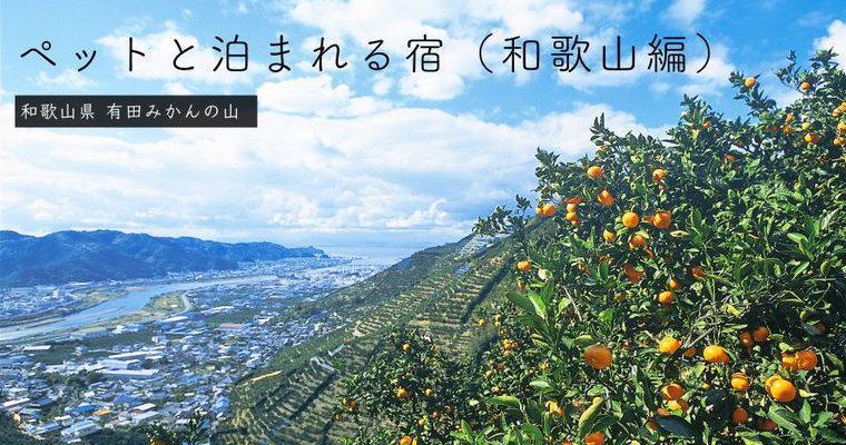 和歌山のペットと泊まれる宿おすすめ13選 犬も入れる温泉やコテージなど特徴別に紹介