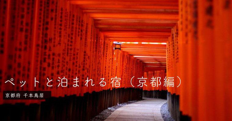 京都のペットと泊まれる宿おすすめ25選 人気宿や高級宿、猫可の宿など特徴別に紹介