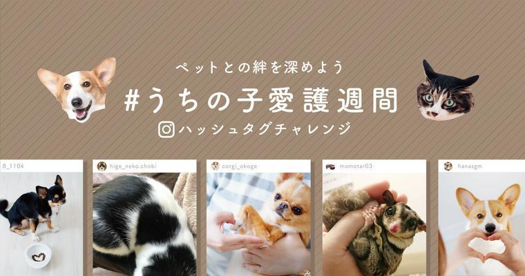 【最新2019年版】全国の動物愛護週間イベントまとめ 中央行事やポスターの紹介も