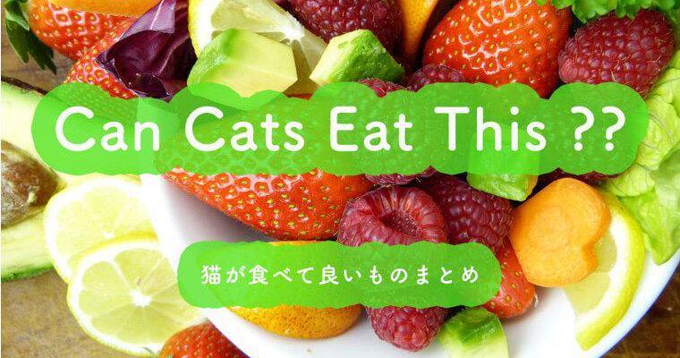 猫が食べて良いものまとめ 野菜・果物・穀物など主な栄養素や期待される効果