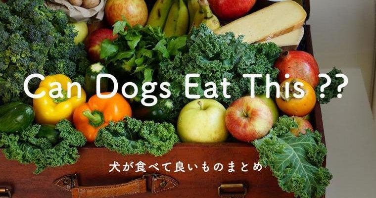 犬 に あげ て いい 食べ物