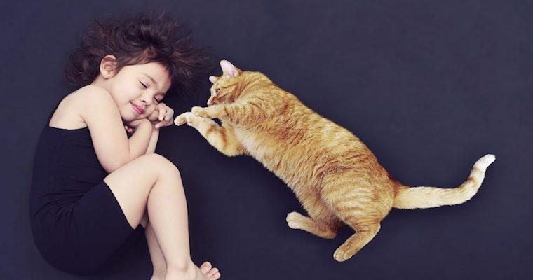 猫の夢はどんな意味がある? 茶トラ・黒い・白い猫の意味など夢占いで徹底解説