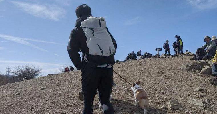 アルプス山脈が綺麗!  愛犬コルクと「入笠山」に登山へ行ってきました【今日のシロップ】