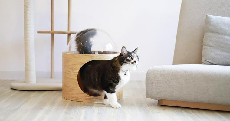 【Buyer's Review】人気の猫グッズブランドMYZOOの「宇宙船ガンマ ネコハウス」