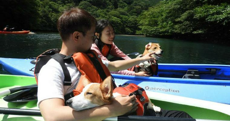 犬とカヌー(カヤック)を楽しもう! ペットも参加できる関東&関西のオススメツアーを紹介