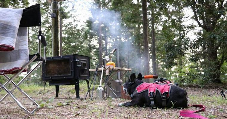 犬キャンの可能性を広げよう! 型にはまらない自由なキャンプのおきてVol.5【愛犬とアウトドア】