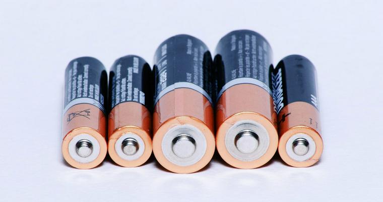 犬が電池を誤飲した際の危険性や症状、対処法を解説【獣医師監修】