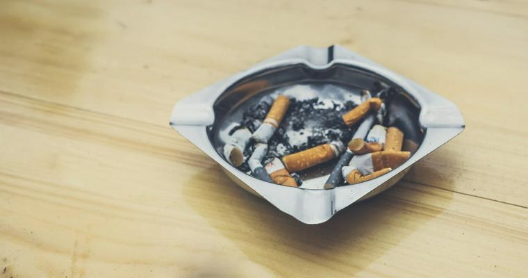 猫にとってタバコは非常に危険なもの 致死量や誤食時の対処法について解説