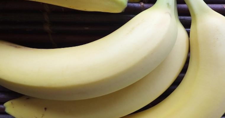 猫はバナナを食べて大丈夫? バナナの皮に驚く理由も説明